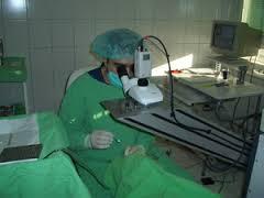 plasztikai sebészet Székesfehérvár